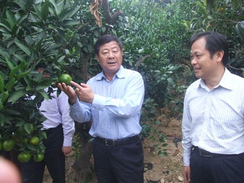 加快农业产业结构调整步伐